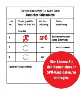 amtlicher Stimmzettel zur Gemeinderatswahl 2010